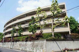 MFPR Court Daikanyama