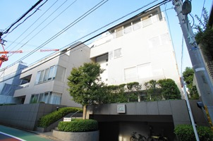 Exterior of Motoazabu N house