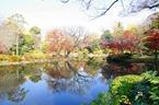 Arisugawa Park in Hiroo, Tokyo