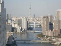 View - Tokyo Sky Tree