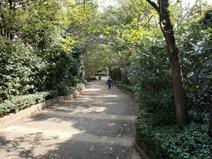 Walk path shiroyama garden