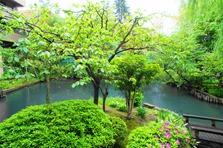 Gamaike Pond