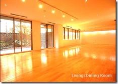 Living room 1 Mayfair Court Roppongi Rental Tokyo