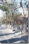 Neigborhood of Garden Gotenyama