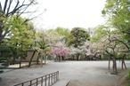 Arisugawa Park 1