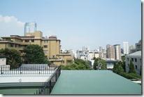 Rooftop balcony