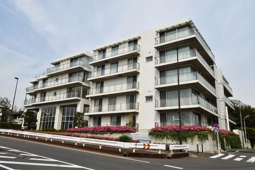 Enjoyable Pet Friendly Rental Apartments And Houses In Tokyo Plaza Homes Complete Home Design Collection Barbaintelli Responsecom