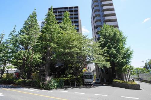 Exterior of コンフォリア北参道